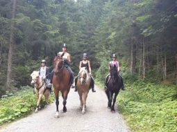 Horseback riding in the beautiful Astrian nature